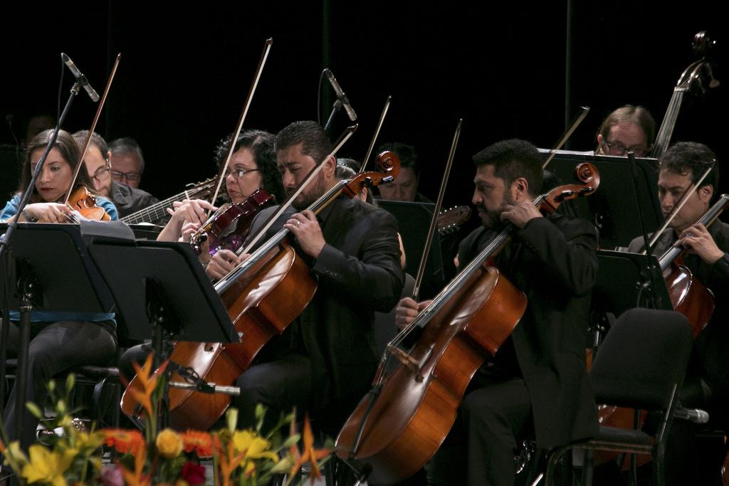 orquesta de cuerda